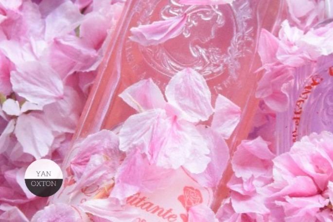 jeanne-en-provence-rose-envoutante-3