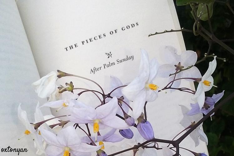 hibiscus-pourpre-chimamanda-ngozi-adichie-avis (4)